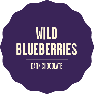 Dark chocolate wild blueberries 2x
