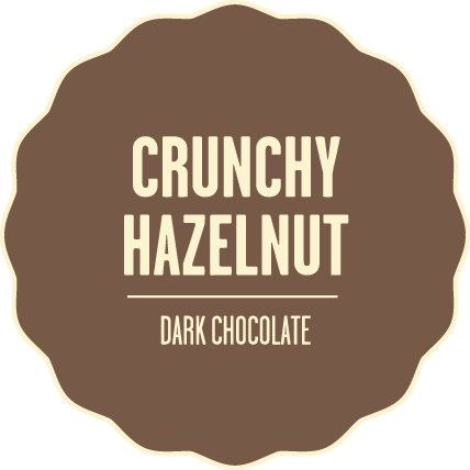 Dark chocolate crunchy hazelnut 2x