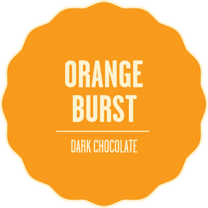 Dark chocolate orange burst 2x