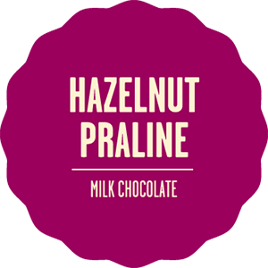 Milk chocolate hazelnut praline 2x
